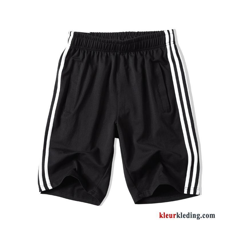 Sport Korte Broek Heren.Heren Zwart Losse Korte Broek Schooluniform Mannelijk Streep Sport